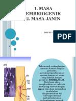 3.Embrio Dan Masa Janin