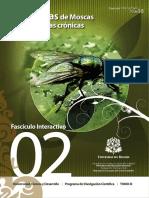 larvas de mosca.pdf