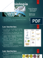 Microbiología - Bacterias