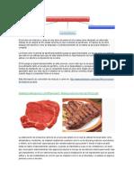 TECNOLOGIA CARNICOSDF.docx