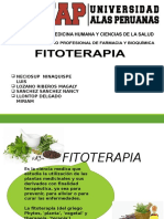 Fitoterapia-DIAPO