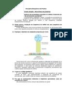 Estudo Dirigido 17 - Biossíntese de Proteínas
