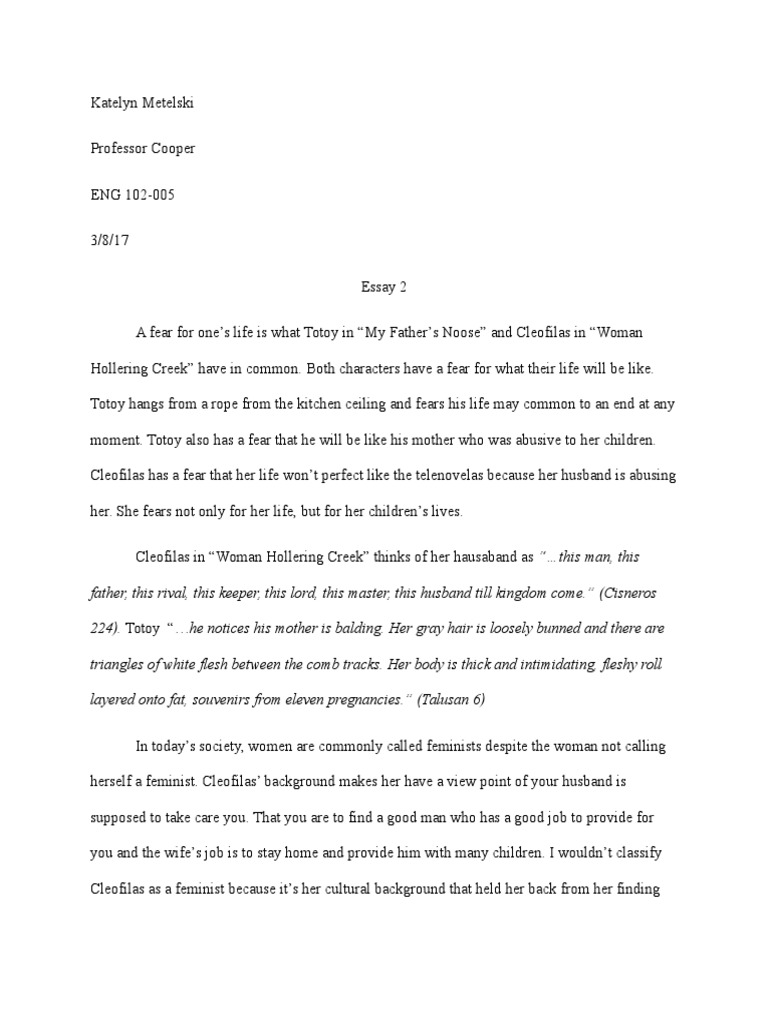 race interview essay In these studies of topic to observe diversity of race and ethnicity that are described by the authors as well as it will try examining each of.