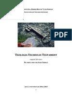 0.5 Draft suport VT.pdf