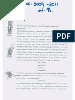 Memorial Inicial de Inconstitucionalidad, Ley Contra El Femicidio