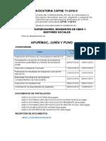 CONVOCATORIA-CAPNE-11-2016-II-WEB.docx