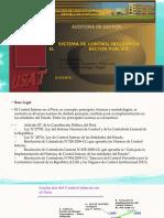 control-interno-sector-publico.pptx