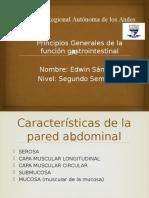 Fisio- Principios Gnerales de La Pared Gastrointestinal