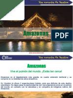 Amazonas 2017