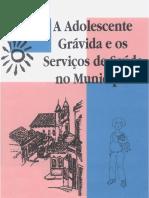 1767-l-aadolescentegrvidaeosserviosdesadenomunicpio-140723124608-phpapp01UM.pdf
