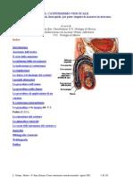 il cateterismo vescicale