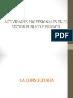 Clase Actividades Profesionales en El Sector Publico