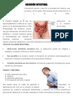 Oclucion Intestinal