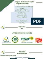 estrategias de comunicaçao organizacional