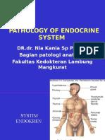 Endocrine System Pathology 2009