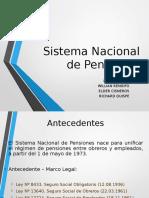 Sistema Nacional de Pensiones (19990) RICHE