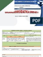 Organizador Didactico Unidad_iii