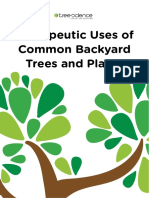 Tree Science eBook - Therapeutic Uses of Common Backyard Trees and Plants
