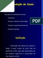 transduodesinaisqumica-130402093438-phpapp02