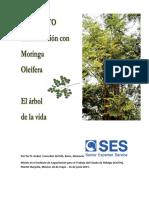 160988797-Manual-Moringa-PDF.pdf
