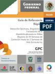 GRR_IMSS_262_10 (1).pdf