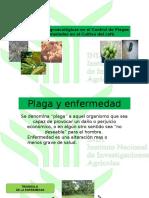 Alternativas Agroecológicas en El Control de Plagas y Enfermedades2