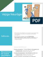Vejiga Neurógena
