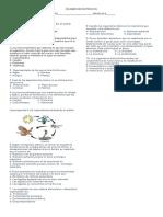 evaluacinnormaln.doc
