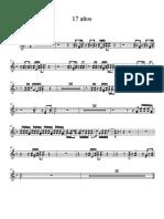 17 años acordeon - Bandoneon