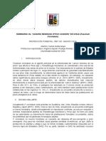 Seminario Fusarium circinatum en Chile