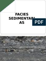Facies Sedimentarias (2)
