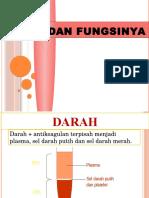 Review Dan Asistensi