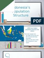 STRUKTUR PENDUDUK INDONESIA2