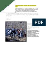 Principio 8 Focalizar o Enfocar El Control en Los Procesos Globales- Ejemplo 1 y 2