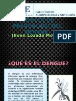 Dengue Salud Publica