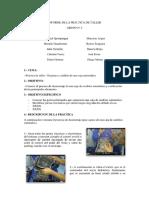images.pdf