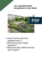 Urbane Landwirtschaft Gemeinsam gärtnern in der Stadt