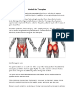 Groin Pain Therapies