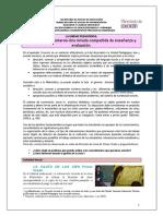 Material_paraDocentes_UPMatematica.pdf