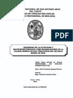 plantami.pdf