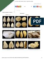 Fósiles - Bivalvos- Álbum de Bivalvos.pdf