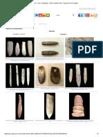 Fósiles - Otros Cefalópodos - Álbum de Belemnites - Región de Murcia Digital.pdf