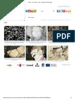Fósiles - Yacimientos - Fotos - Región de Murcia Digital.pdf