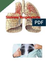 aparato-respiratorio (2)