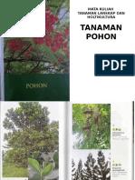Materi Kuliah Tanaman Pohon