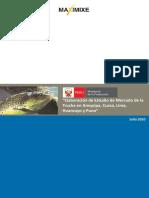 b) DGAJul10 Estudio Mercado Trucha PUNO.pdf
