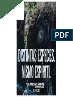 Mismo espiritu.pdf