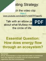 flow of energy  1