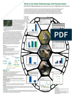 Anthropogenic pressures and effects on river turtles (Spp. Podocnemis) of the Peruvian Amazon