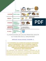 CLASIFICACIÓN DE LOS NUTRIENTES SEGÚN SU FUNCIÓN EN EL ORGANISMO.docx